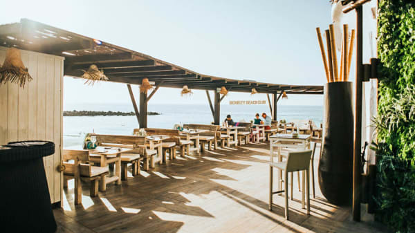 Terraza - Monkey Beach Club