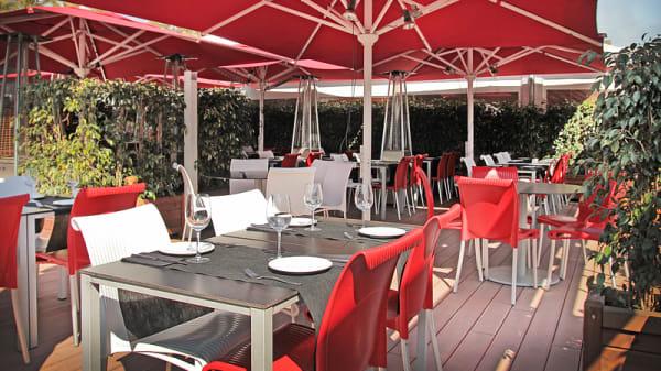 vista terraza - Tapas Locas, Barcelona