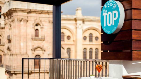 Terraza - The TOP – Hotel Molina Lario, Málaga