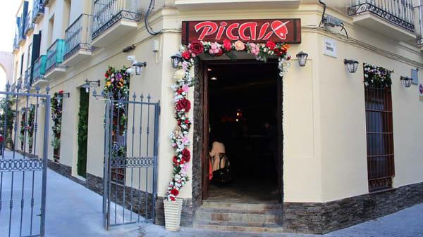 Entrada - Picasso, Málaga