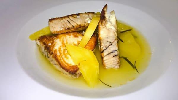 Piatto - Povero Pesce