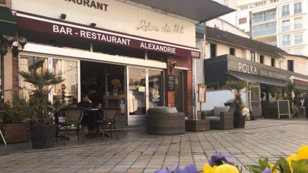 Entrée - Alexandrie, Vichy