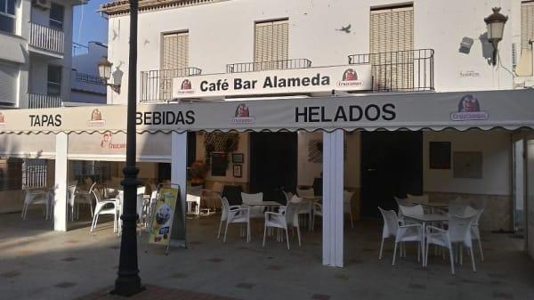 Nueva Alameda, Olvera