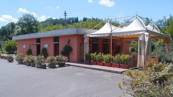 Esteno - L'Acino Rosso, San Casciano In Val Di Pesa