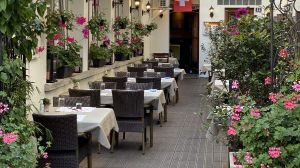 Our private garden  - Sen, Genève