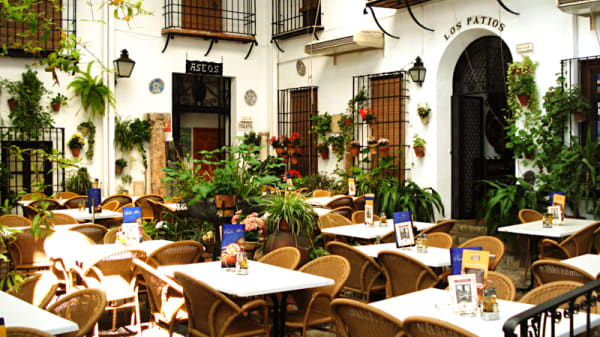 Vista patio - Los Patios, Córdoba