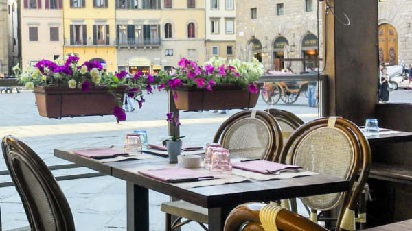Terrazza - Il Cantastorie, Florence