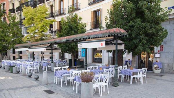 Terraza - La Lonja Taberna, Madrid
