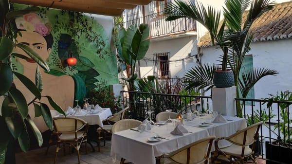 Terraza - Momo Marbella, Marbella