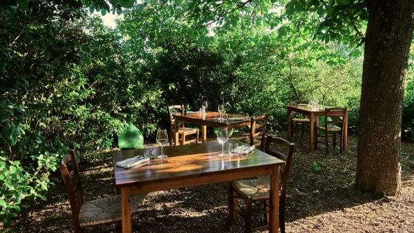 d'estate, mangiamo sotto l'albero - Agriturismo Pulicaro   ARSO Pop up Restaurant, Torre Alfina