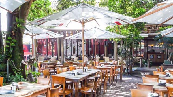 Jardim - Pé de Manga, São Paulo