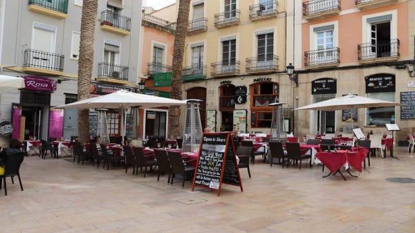 Terraza - Rosa, Alicante (Alacant)