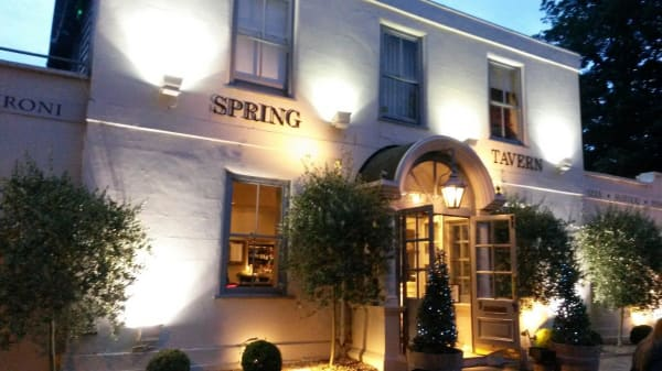 entry - The Spring Tavern, Epsom
