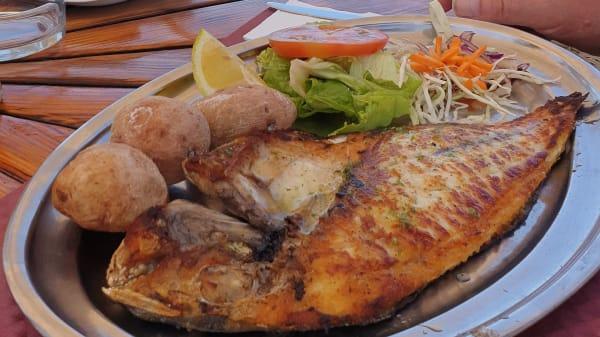 Pescado del día a la espalda - Restaurante Mayte, Arona (Spain)