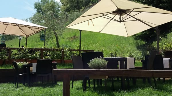 Il giardino del Particolare - Particolare di Siena, Siena