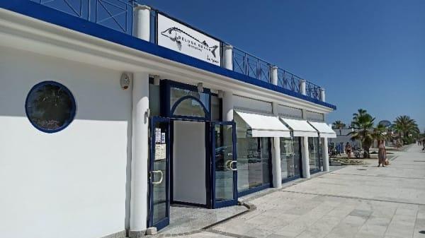 Esterno - Beluga Beach Restaurant, Grottammare