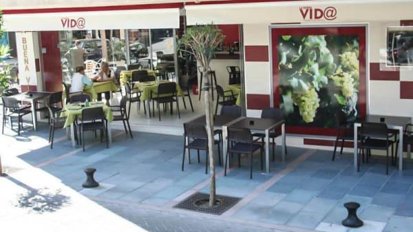 Vista entrada - La Buena Vida, Marbella