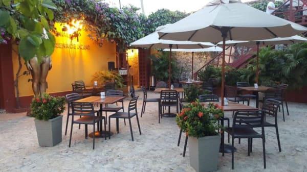 Terraza - Cafe Ficci, Cartagena, Provincia de Cartagena
