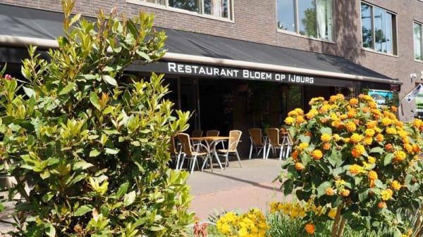 Terras - Bloem op IJburg, Amsterdam