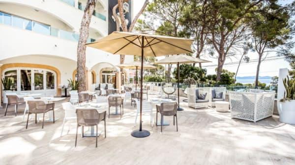 Terraza - Melassa Restaurant & Lounge Alcanada - SOM Hotels, Alcudia
