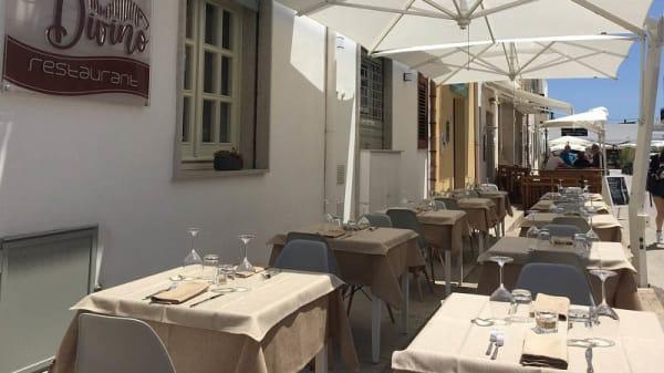 Esterno - Divino Restaurant, San Vito Lo Capo