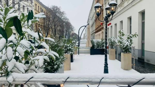 Il Pennello, Wien
