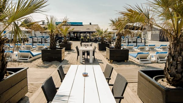 Terras - Beachclub Royal, Hoek van Holland