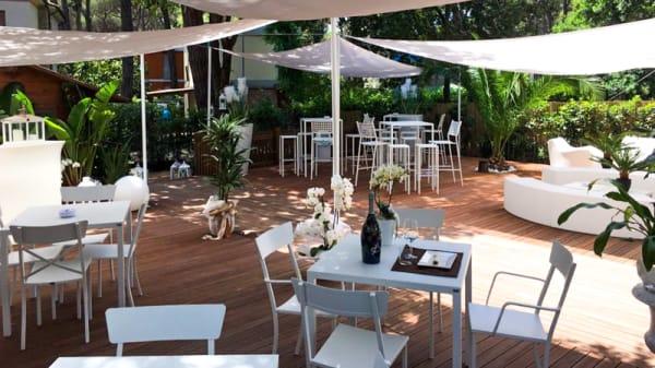 Terrazza - BarLume Lounge, Marina di Castagneto Carducci