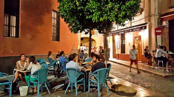 Vista terraza - El Pasaje - Santa María La Blanca, Sevilla