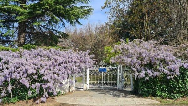 Villa Glicini HR, Buttigliera Alta