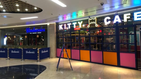 Photo 4 - Kitty Café - Birmingham, Birmingham