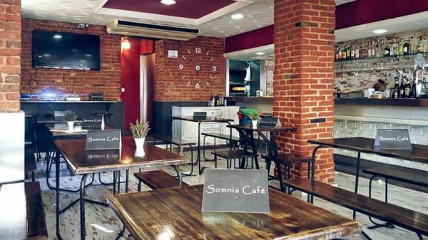 sala - Somnia Café, Madrid