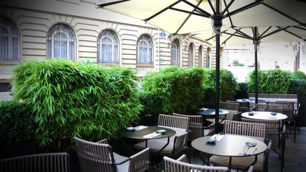 La terrasse - Zo, Paris