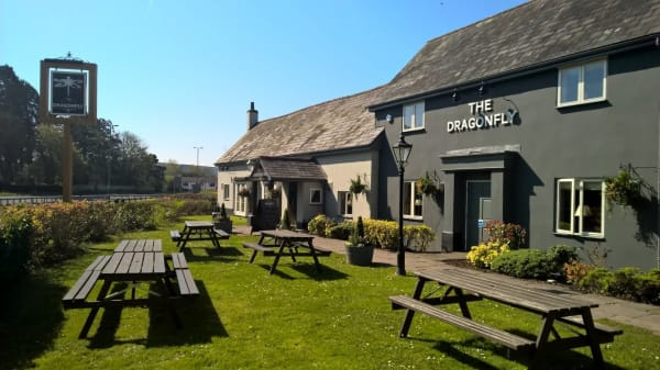 The Dragonfly, Newport