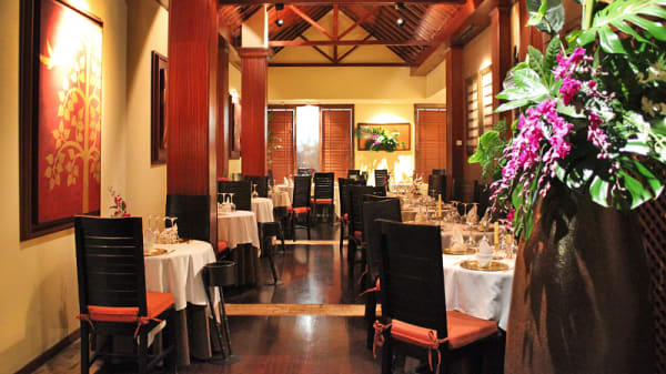 Vista sala - Thai Barcelona | Royal Cuisine, Barcelona