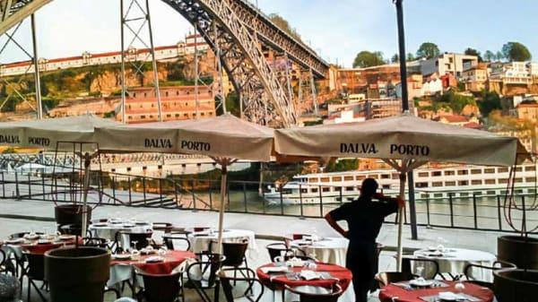 Esplanada - Fish Fish, Porto