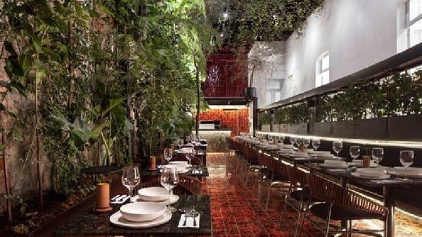 Sala - Xuva Culinaria, Ciudad de México