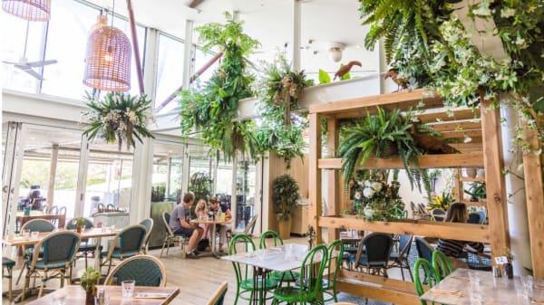 Restaurant - Dragonfly, Macquarie Park (NSW)