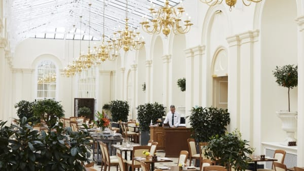 Room's view - The Orangery at Blenheim Palace, Woodstock