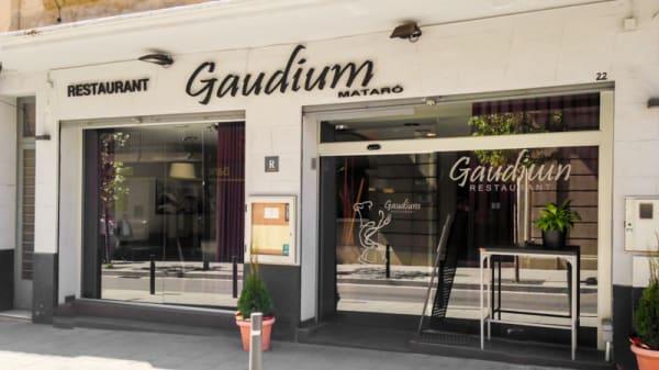 entrada - Gaudium, Mataró