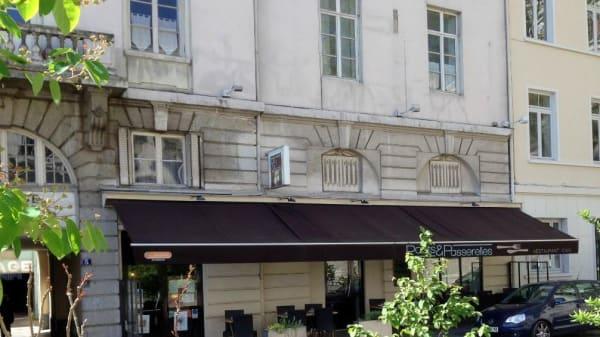 pont et passerelle - Ponts et Passerelles, Lyon