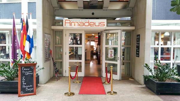 Ingang - Grand Café Amadeus, Zwolle