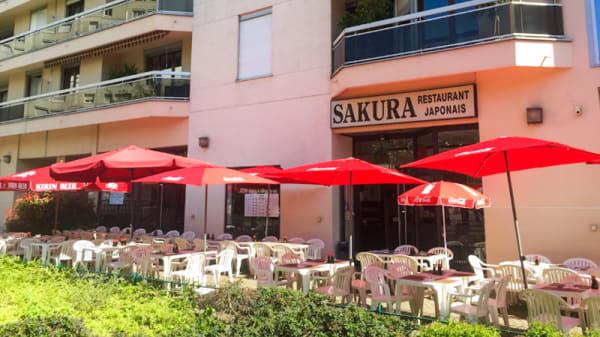 Terrasse - Sakura, Puteaux