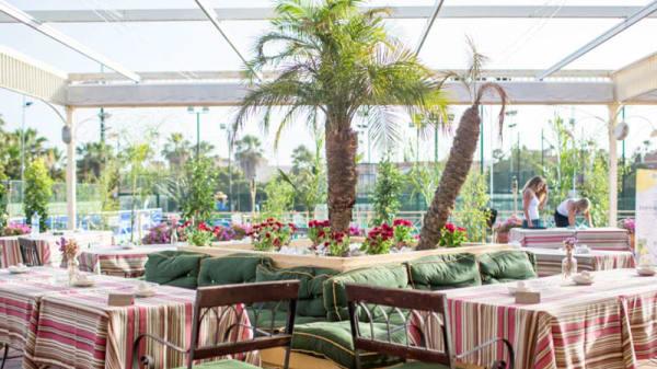 Vista terraza - NAC - Nueva Alcántara Café, Marbella