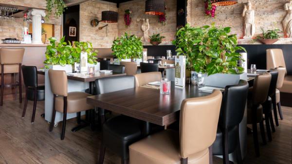 Restaurant - Mister Pita, Rotterdam