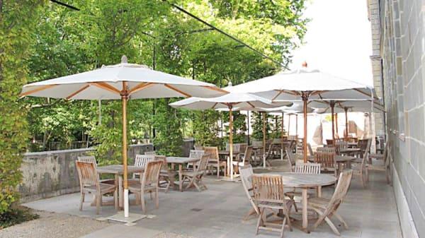 Vue de la terrasse - Le Café du Château, Prangins