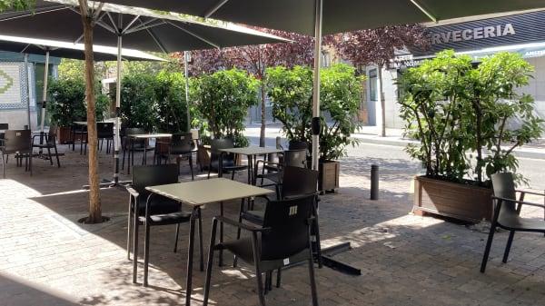 Terraza - Nigola, Madrid