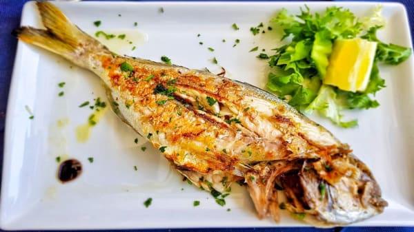 Piatto - Sapori di mare Food&Fish, Santa Marinella