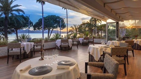 terrasse - La Palme d'Or, Cannes