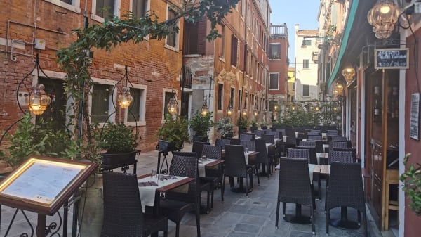 Bacarandino, Venice